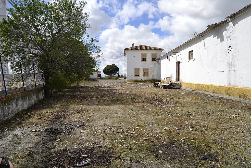 Nave industrial en alquiler en Torrejón de la Calzada - 131157574