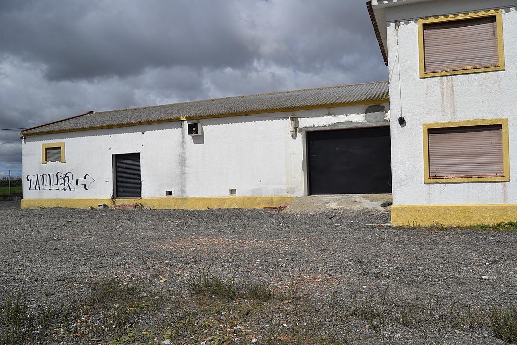 Nave industrial en alquiler en Torrejón de la Calzada - 131157600