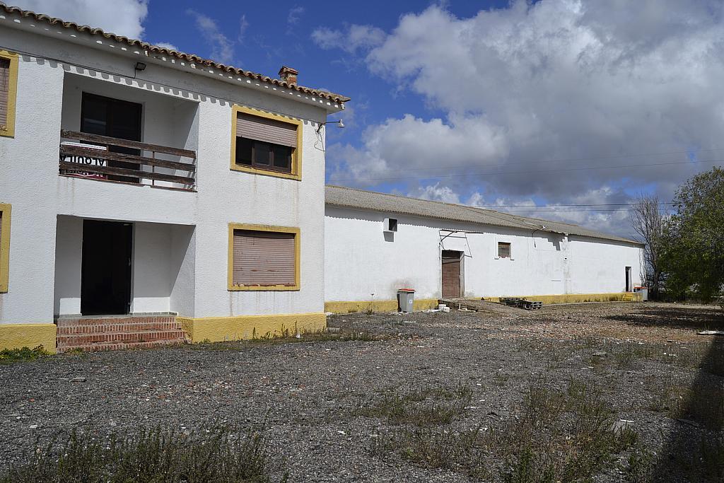 Nave industrial en alquiler en Torrejón de la Calzada - 131157661