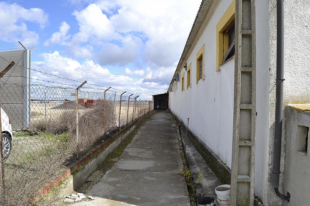 Nave industrial en alquiler en Torrejón de la Calzada - 131157902