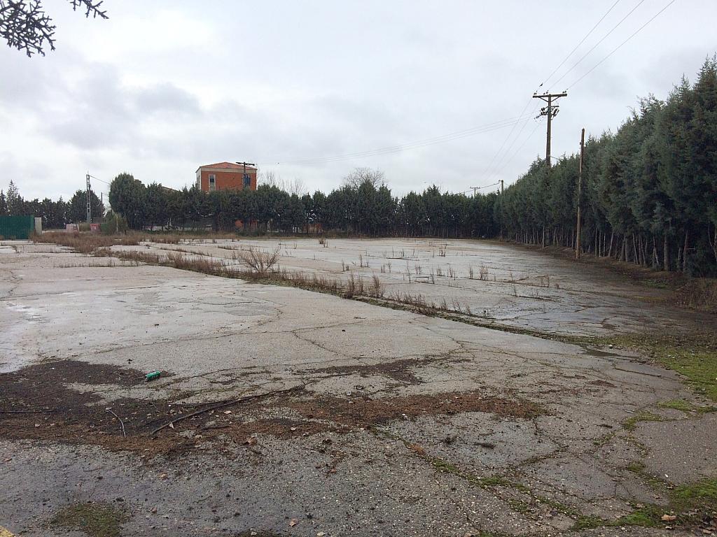 Nave industrial en alquiler en Torrejón de la Calzada - 176064338