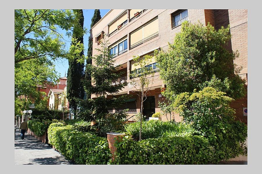 """foto"" - Piso en alquiler en calle Avenida de Alfonso XIII, Chamartín en Madrid - 254586762"