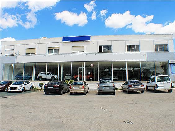 Nave en alquiler en carretera Sevillahuelva a, Sanlúcar la Mayor - 273046635
