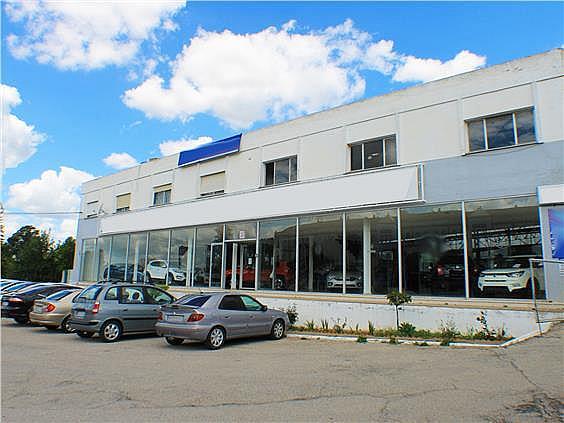 Nave en alquiler en carretera Sevillahuelva a, Sanlúcar la Mayor - 273046638