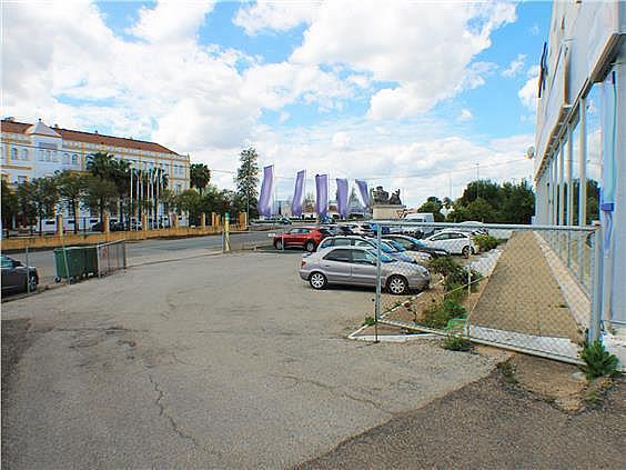 Nave en alquiler en carretera Sevillahuelva a, Sanlúcar la Mayor - 273046641