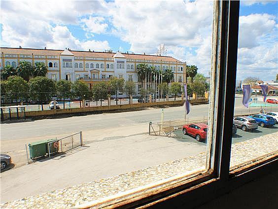 Nave en alquiler en carretera Sevillahuelva a, Sanlúcar la Mayor - 273046689