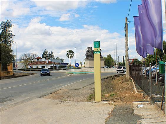 Nave en alquiler en carretera Sevillahuelva a, Sanlúcar la Mayor - 273046701