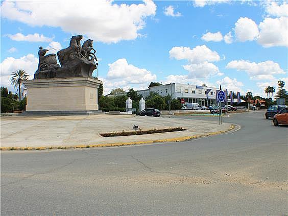 Nave en alquiler en carretera Sevillahuelva a, Sanlúcar la Mayor - 273046707
