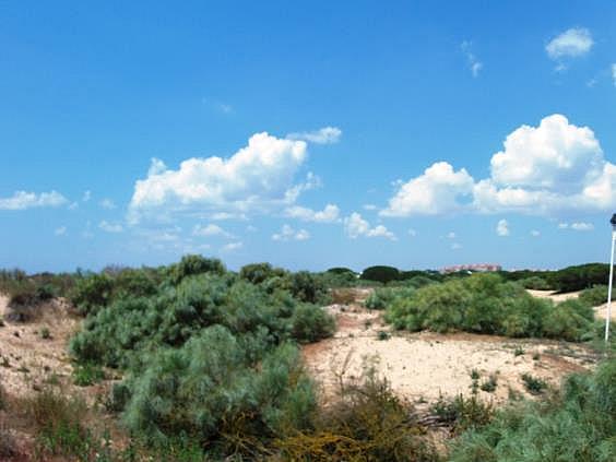 Local en alquiler en urbanización Playas de Huelva, Punta Umbría - 311491948