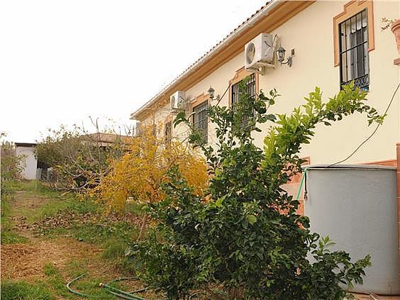 Casa en alquiler en urbanización Diseminado Pilarica, Puebla del Río (La) - 321783354