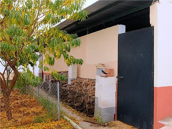 Casa en alquiler en urbanización Diseminado Pilarica, Puebla del Río (La) - 321783357