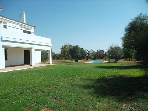 Chalet en alquiler en urbanización Olivares del Pozo, Bollullos de la Mitación - 330022342