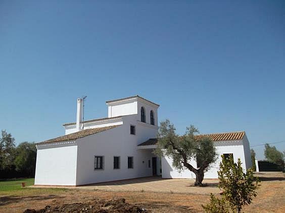 Chalet en alquiler en urbanización Olivares del Pozo, Bollullos de la Mitación - 330022351