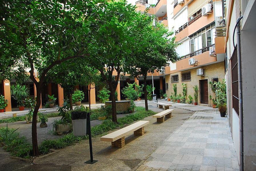 Foto - Local comercial en alquiler en calle Luis Montoto Santa Justa, Nervión en Sevilla - 332913961
