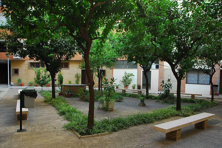 Foto - Local comercial en alquiler en calle Luis Montoto Santa Justa, Nervión en Sevilla - 332913964