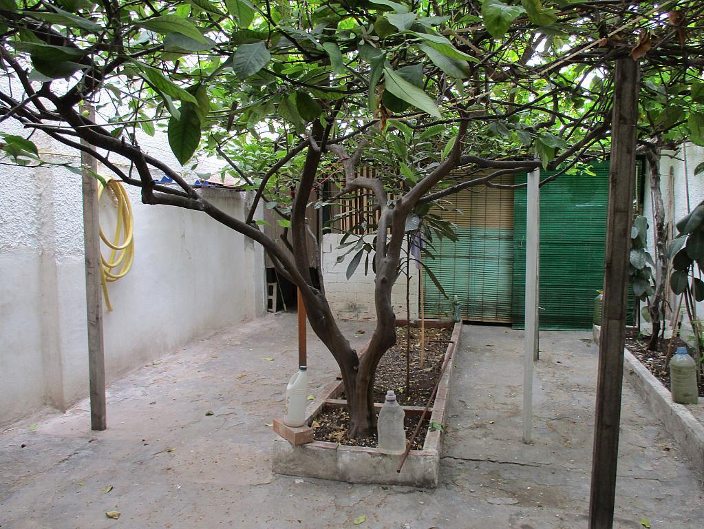 Patio - Local en alquiler en calle Torres Quevedo, Centro en San Vicente del Raspeig/Sant Vicent del Raspeig - 267634283