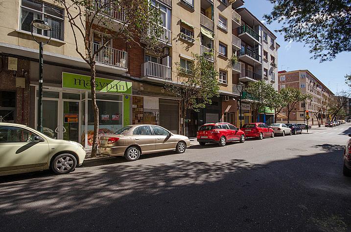 Entorno - Local comercial en alquiler en calle Sancho Arroyo, Las Fuentes – La Cartuja en Zaragoza - 254189570