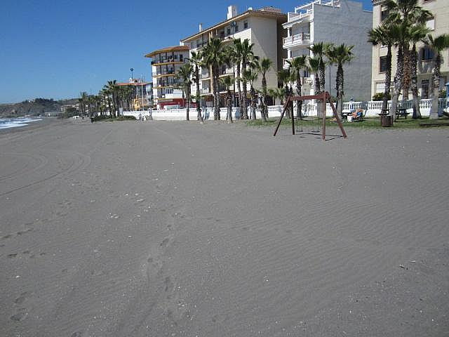 Entorno - Apartamento en alquiler de temporada en Morche, El - 203365444