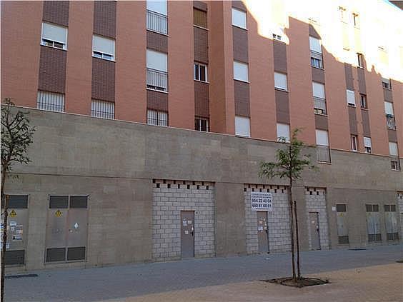 Local en alquiler en calle Emilio Lemos, Este - Alcosa - Torreblanca en Sevilla - 240666275