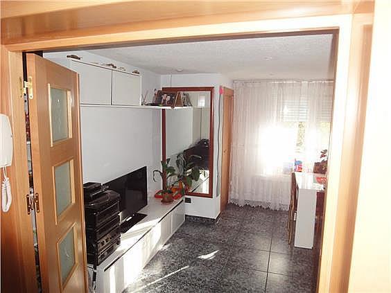 Piso en alquiler en calle Lenceros, Amposta en Madrid - 275865550