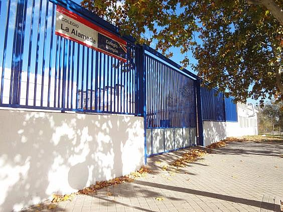 Piso en alquiler en calle Iliada, Canillejas en Madrid - 328412071