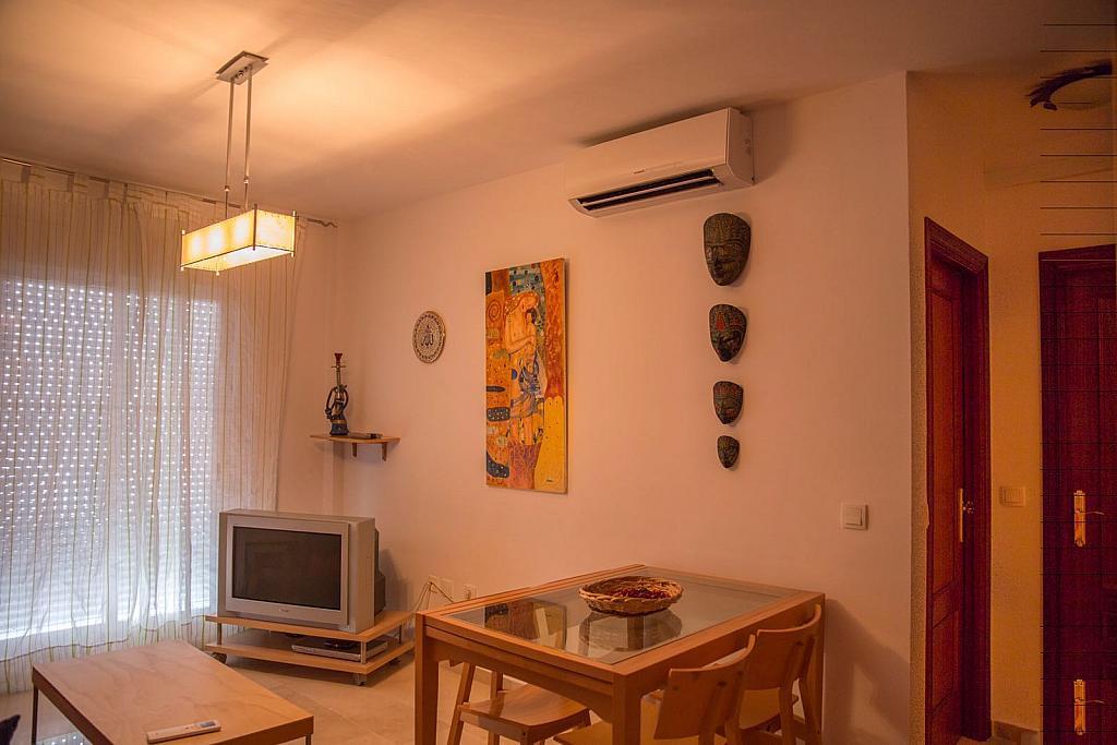 Salón - Piso en alquiler en calle Miguel de Cervantes, Vejer de la Frontera - 312585759