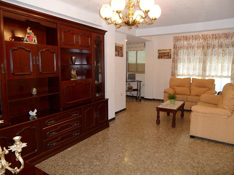 Alquiler de pisos de particulares p gina 293 - Alquiler de pisos sevilla particulares ...