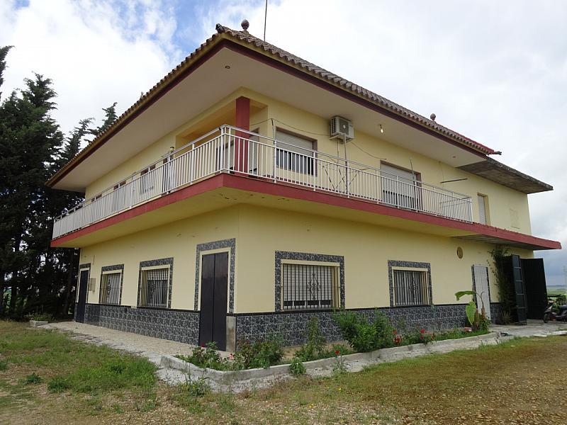Fachada - Casa en alquiler en calle De Sevilla, Tocina - 133764631