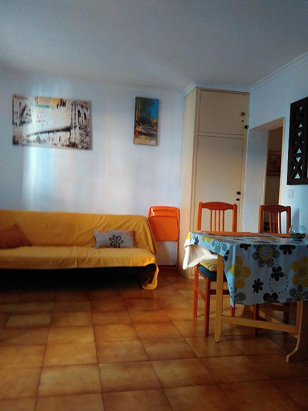 Comedor - Piso en alquiler en calle Jumilla, La Llum en Valencia - 318875063