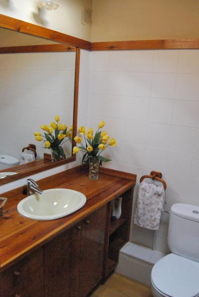 Baño - Dúplex en alquiler en urbanización Le Village Rue de Font Romeu, Llívia (Girona) - 100975223