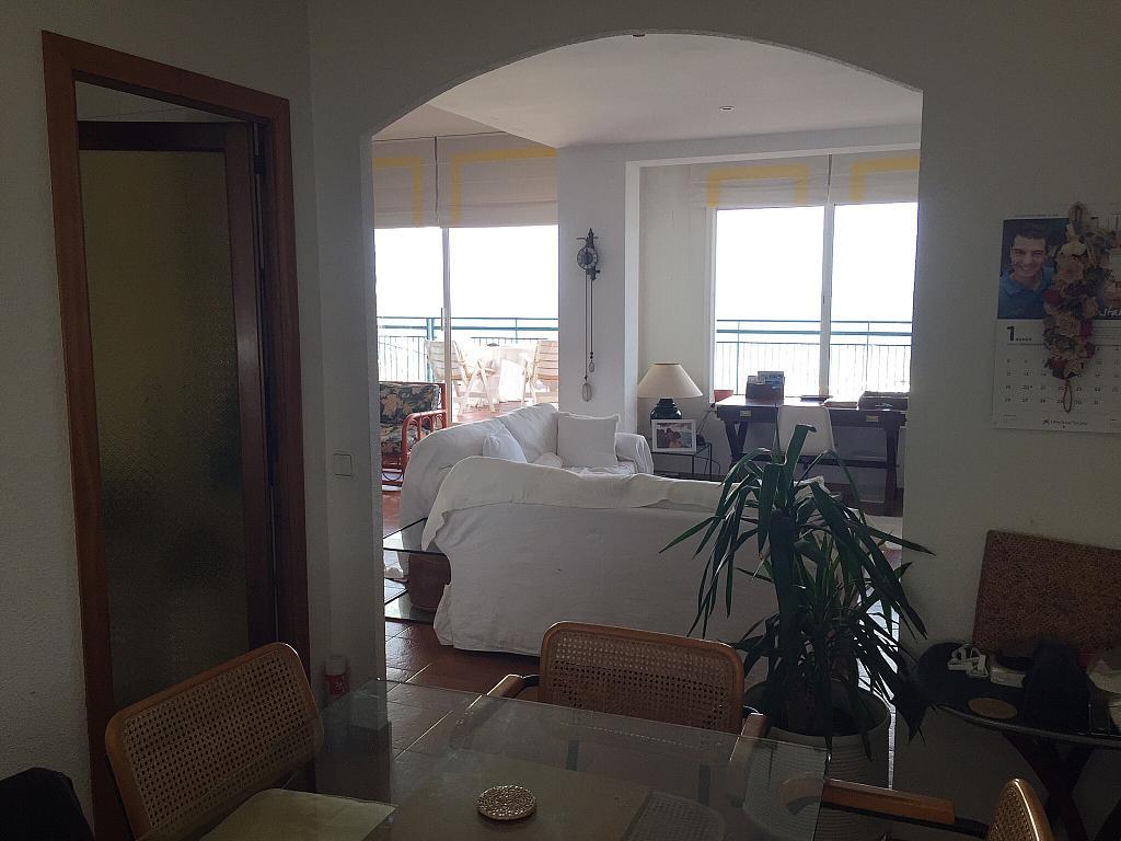 Salón - Ático en alquiler en calle Nou, Parc del Garraf en Sitges - 320754678