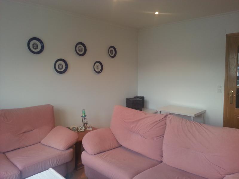 salon-piso-en-venta-en-lodeiro-viveiro-118645956
