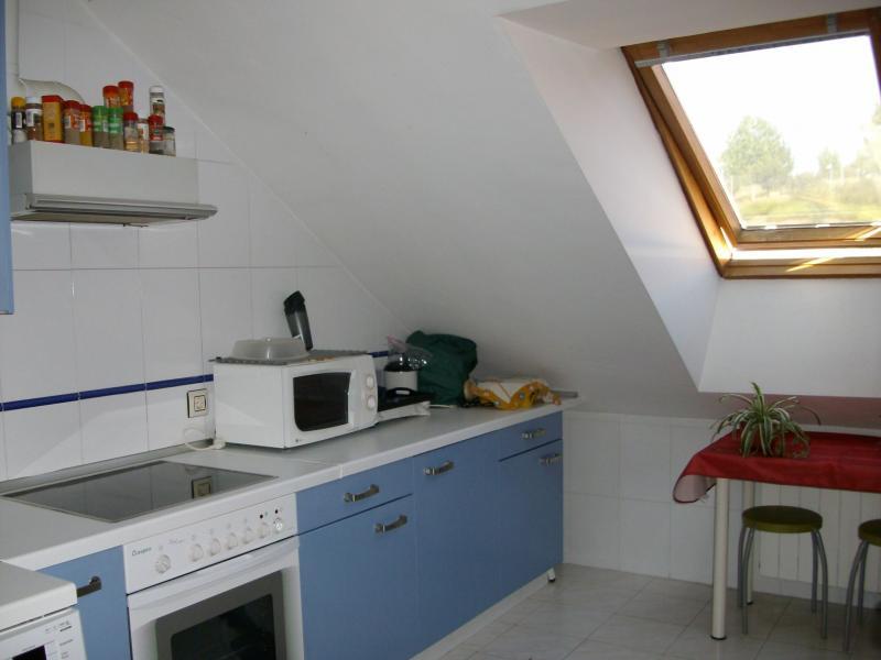 Cocina - Apartamento en alquiler en calle Jean Laurent, Salamanca - 120373440