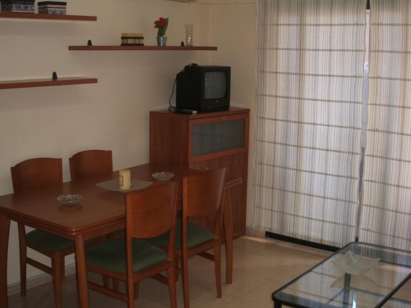 Pisos de particulares en la ciudad de alicante for Alquiler de pisos en sevilla centro particulares