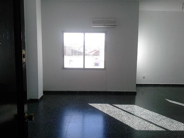 Detalles - Oficina en alquiler en calle Marín Garcia, Centro en Málaga - 137669482