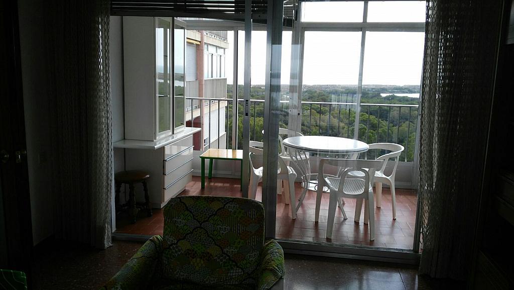 Salón - Apartamento en alquiler en calle Gola de Puchol, Saler, El - 316040047