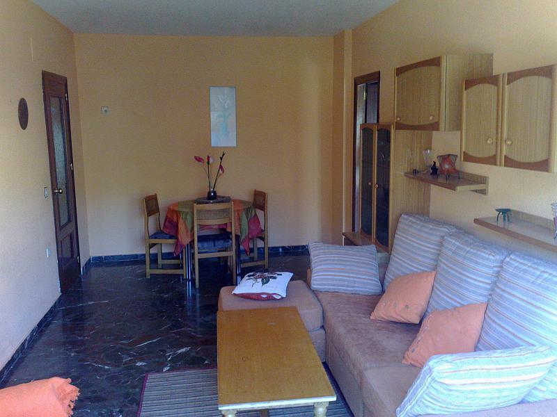 Salón - Piso en alquiler en calle Real, Cenes de la Vega - 218946076