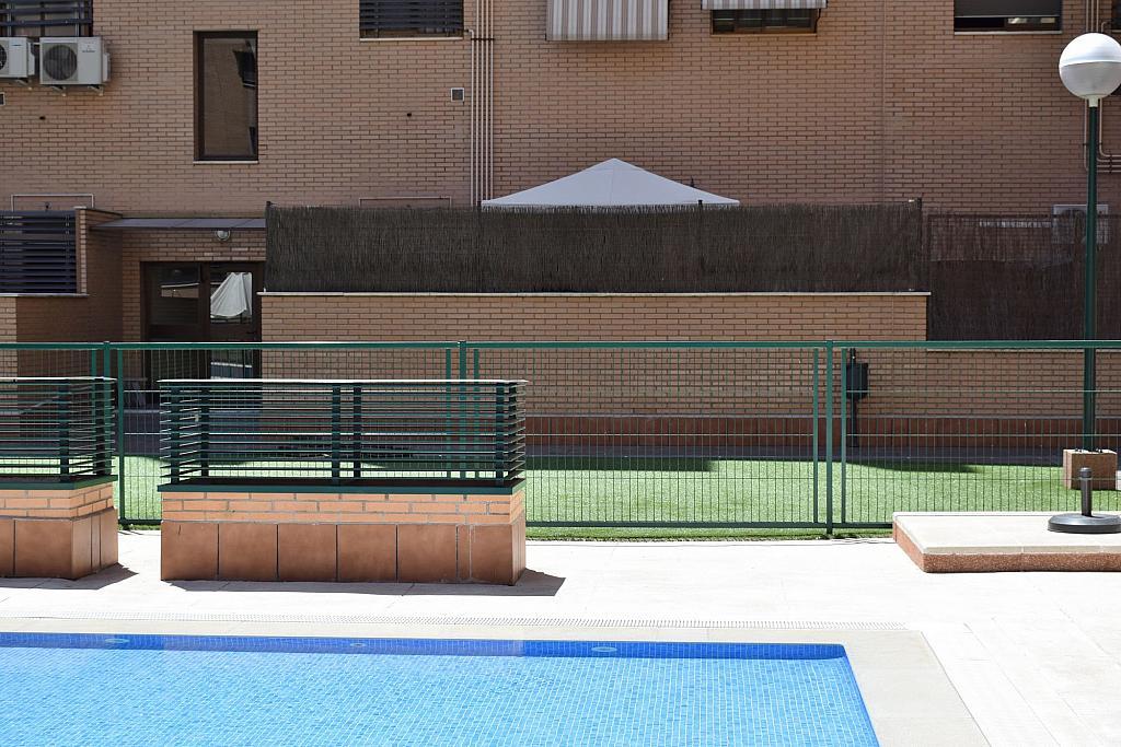 Jardín - Piso en alquiler en calle Monaco, Rosas-Musas en Madrid - 301814935