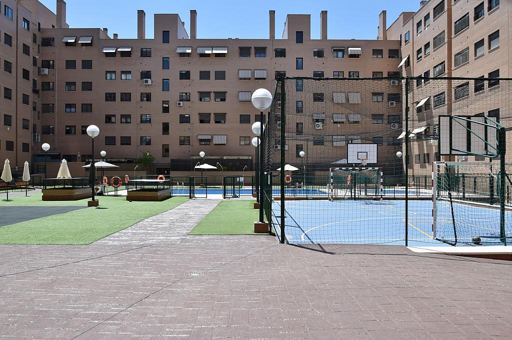 Jardín - Piso en alquiler en calle Monaco, Rosas-Musas en Madrid - 301814955