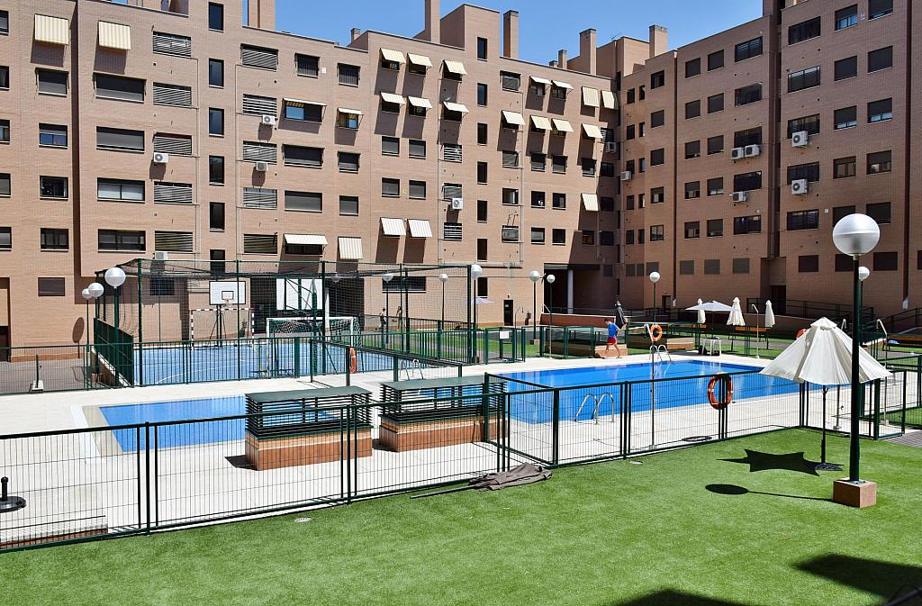 Piscina - Piso en alquiler en calle Monaco, Rosas-Musas en Madrid - 301814993