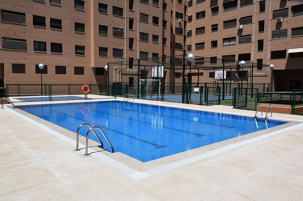 Piscina - Piso en alquiler en calle Monaco, Rosas-Musas en Madrid - 301814999