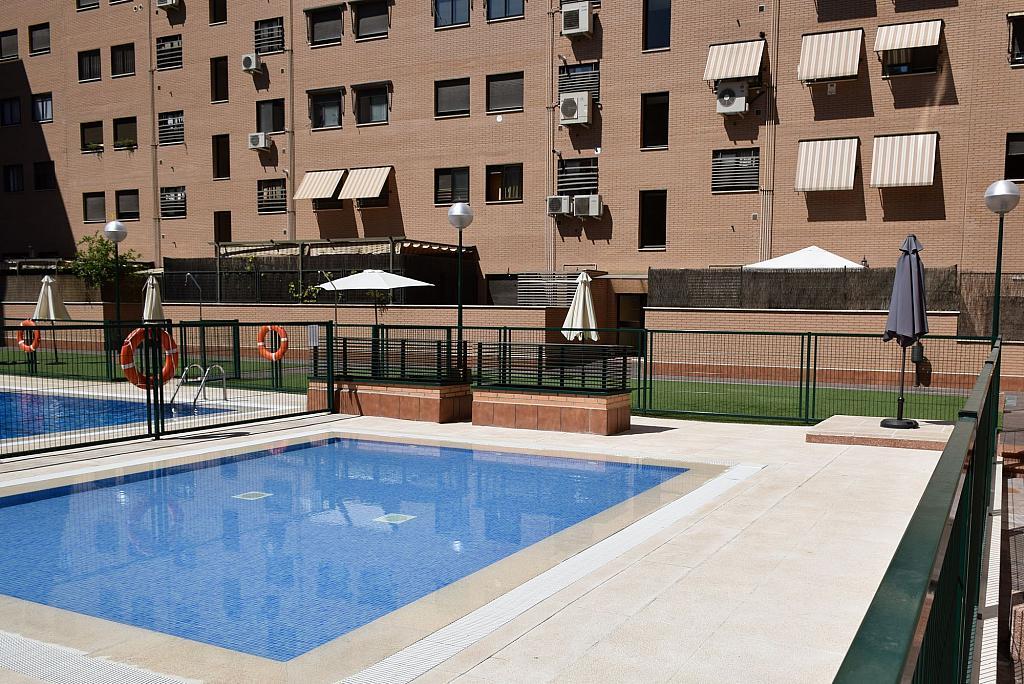 Piscina - Piso en alquiler en calle Monaco, Rosas-Musas en Madrid - 301815016