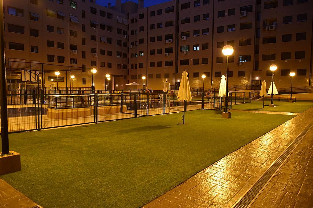 Jardín - Piso en alquiler en calle Monaco, Rosas-Musas en Madrid - 301815045