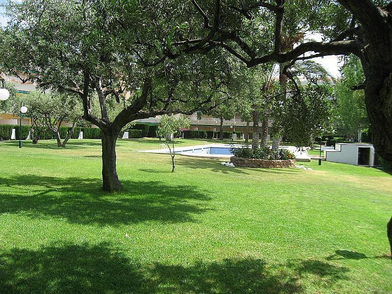 Jardín - Apartamento en alquiler en calle Palfuriana, Sant Salvador (urb) - 216591298
