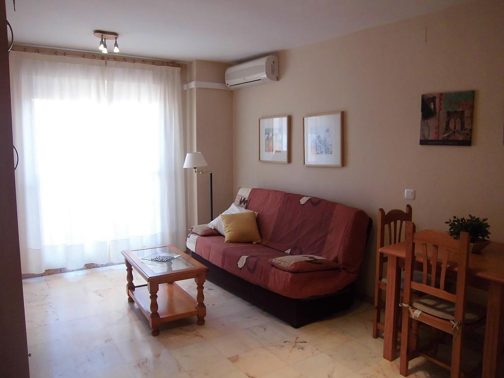 Alquiler de pisos de particulares en la provincia de - Pisos de alquiler en malaga ...