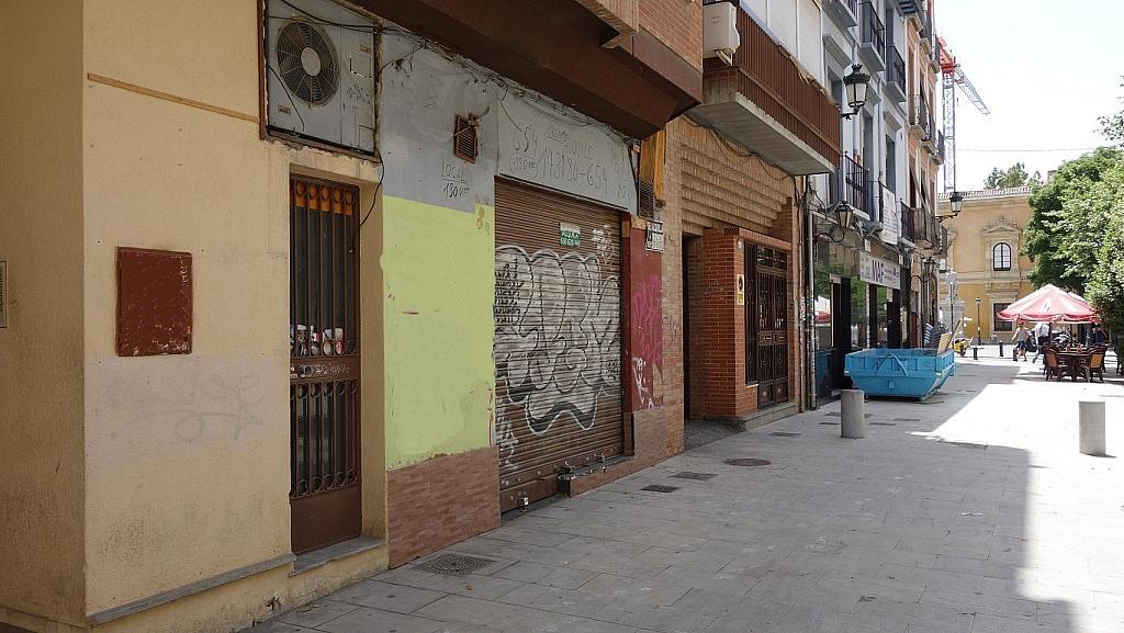 Vistas - Local comercial en alquiler en plaza Encarnación, Centro en Granada - 316023058