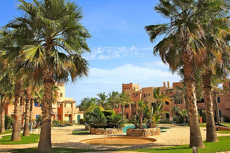 Piscina - Apartamento en alquiler en paseo De Los Limoneros, Vera - 162039161