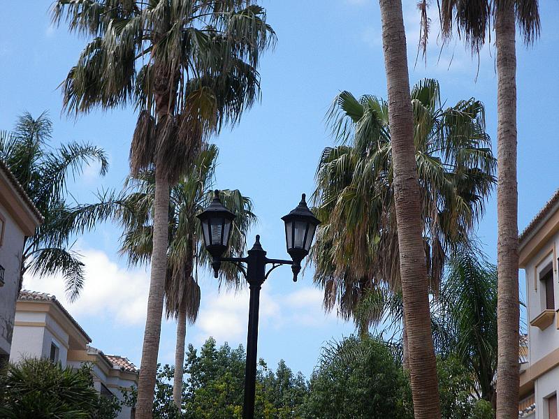 Jardín - Apartamento en alquiler en calle Coll Verd, Las Marinas - Les Marines  en Dénia - 237712047