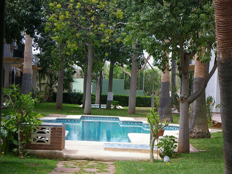 Piscina - Apartamento en alquiler en calle Coll Verd, Las Marinas - Les Marines  en Dénia - 237712055