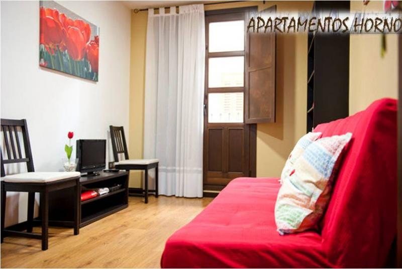 salon-apartamento-en-alquiler-en-horno-arrabal-en-zaragoza-120056833